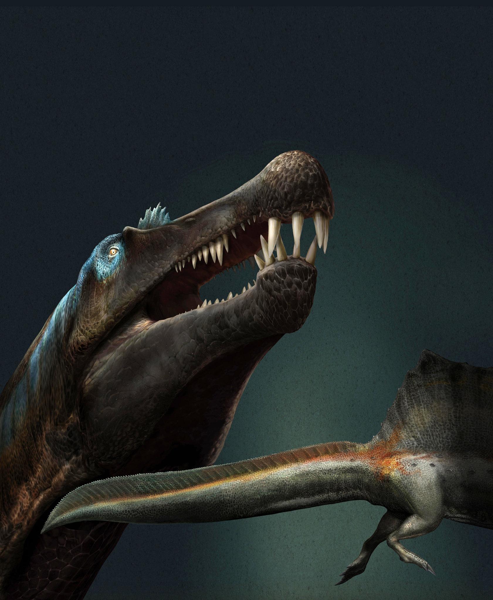 Ny T Rex : Strange, Dinosaur, Rivers, Africa, Times