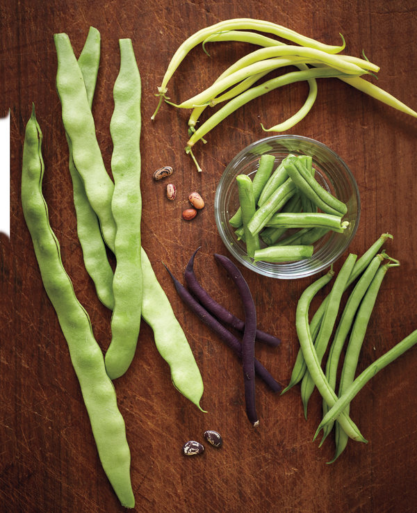 """A variety of beans featured in """"Homegrown Pantry,"""" by Barbara Pleasant."""