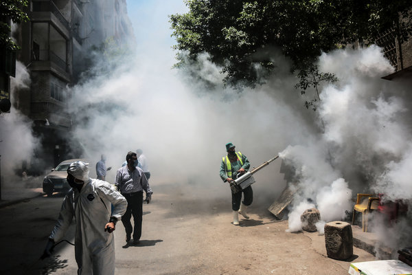 Workers disinfect a street in downtown Cairo last week.