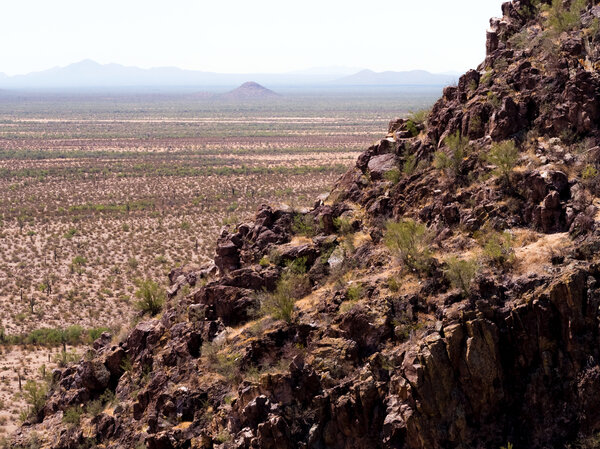 Bird Nest Hill in the Sonoran Desert near Sells, Ariz.