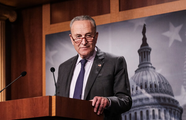 """Senator Chuck Schumer of New York said during a call with Senate Democrats that """"everything Americans value is at stake."""""""