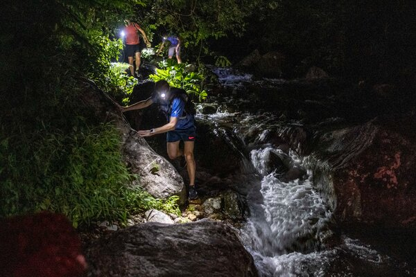 William Sargent, who runs Hong Kong Snakes Safari, said the best way to avoid a snakebite is to watch your feet and walk with a high-quality headlamp.