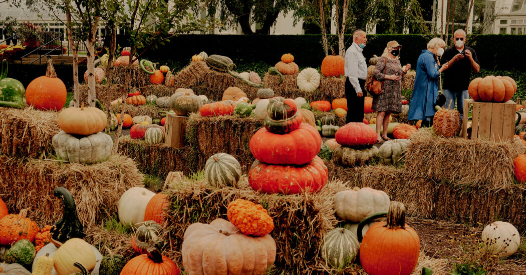Halloween's Not Canceled: Here's How to Make It Spooky but Safe