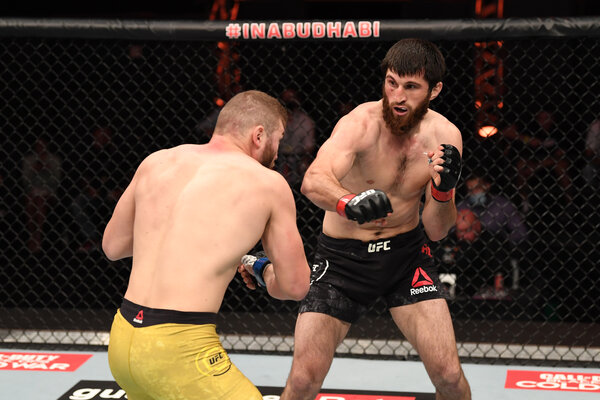 Magomed Ankalaev said his win over Ion Cutelaba in a rematch proved that a previous win wasn't a fluke.