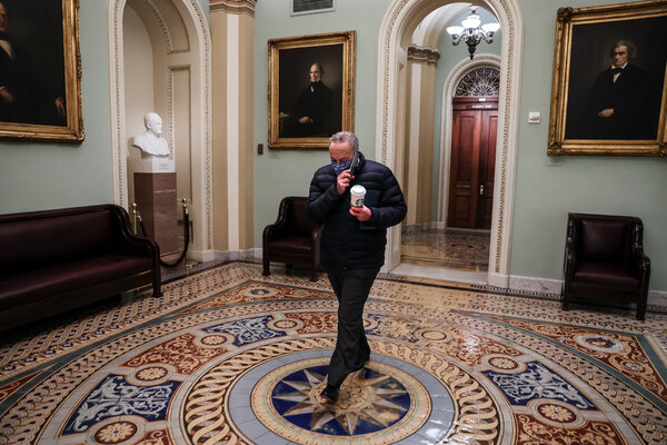 """Senator Chuck Schumer of New York, the new majority leader, at the Capitol on Wednesday. """"We should have learned the lesson of 2008 and 2009, when Congress was too timid and constrained in its response to the financial crisis,"""" he said last week."""