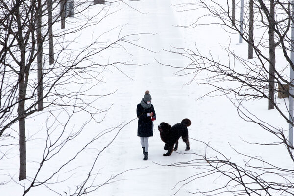 Snow accumulated on Monday in Smale Riverfront Park in Cincinnati, with more heavy snow expected through Tuesday.