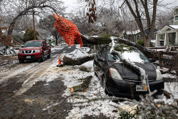 A fallen tree limb on a vehicle in Austin. There have been dozens of deaths linked to this week's winter storms.