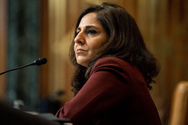 Neera Tanden during her confirmation hearing to be director of the Office of Management and Budget this month.