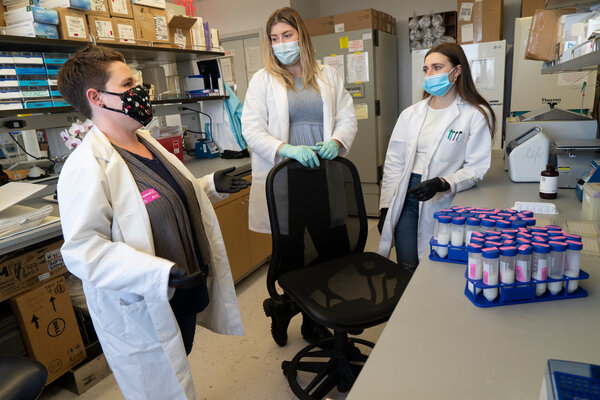Rebecca Powell, left, and her research team have collected breast milk samples for analysis at her Mount Sinai Hospital laboratory.