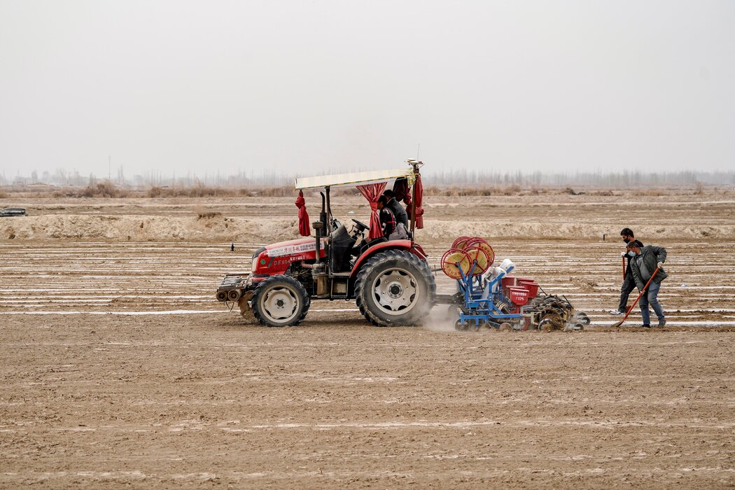 无法摆脱的新疆棉:西方与中国之间,国际品牌选哪边 无法摆脱的新疆棉:西方与中国之间,国际品牌选哪边