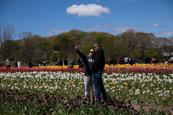 Two people taking a selfie together in a field of flowers in Holland, Mich., this month.