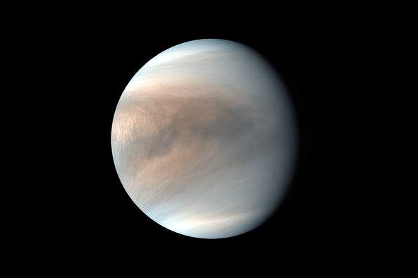 NASA's last expedition to Venus was its Magellan program in 1990.