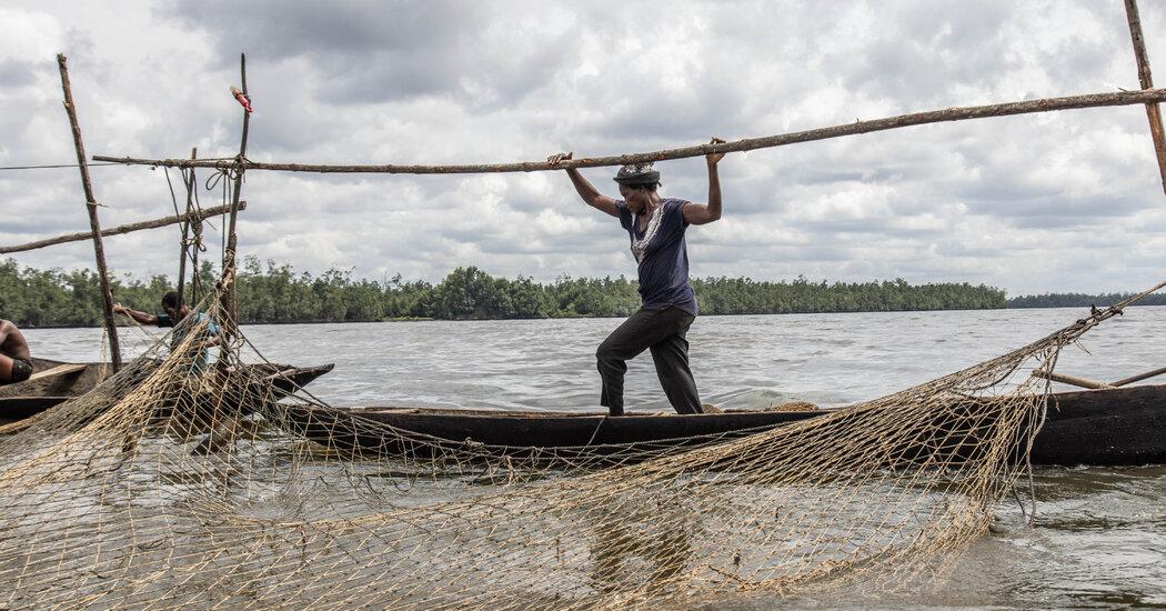 The Fisherwomen, Chevron and the Leaking Pipe