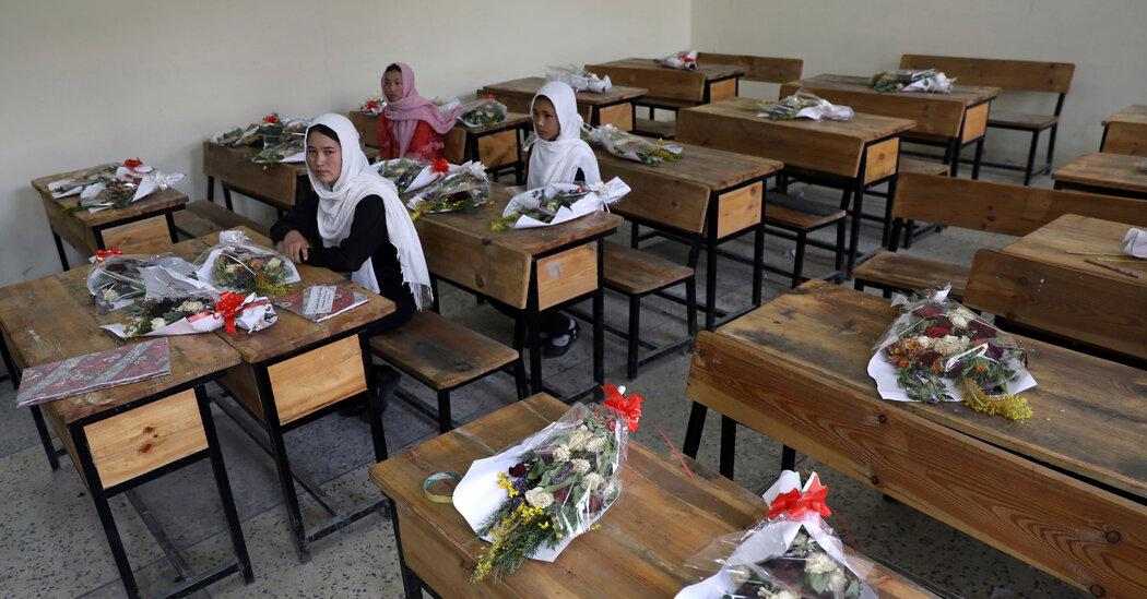 Afghan Civilian Casualties Soar as U.S. Exits, Monitors Say
