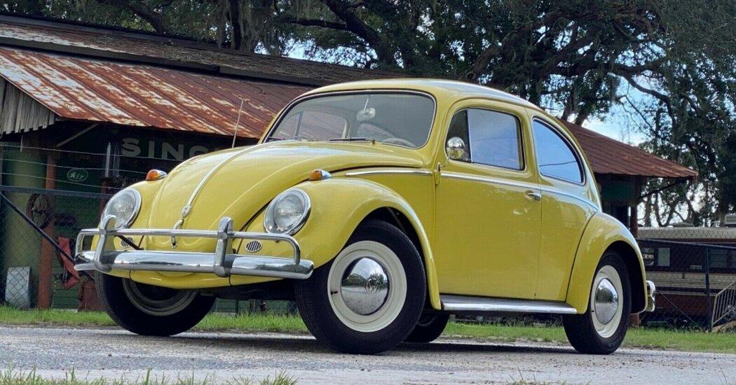 , Collectors Who Caught the Bug, The Habari News New York