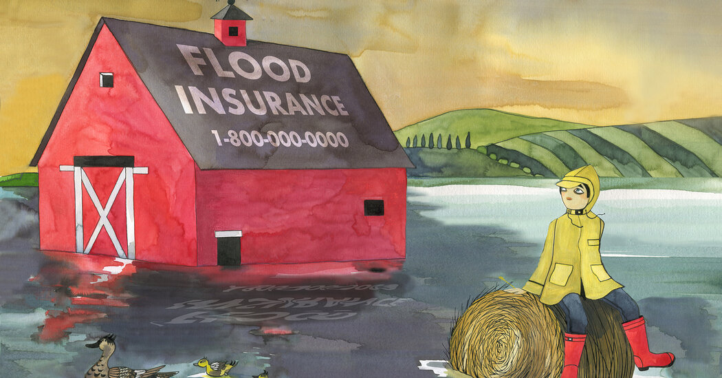 , Should You Get Flood Insurance for Your Home?, The Habari News New York