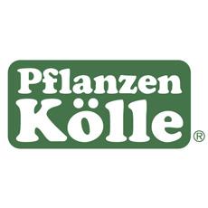 Pflanzen Kölle Aktuelle Angebote Im Prospekt Vom Pflanzen Kölle