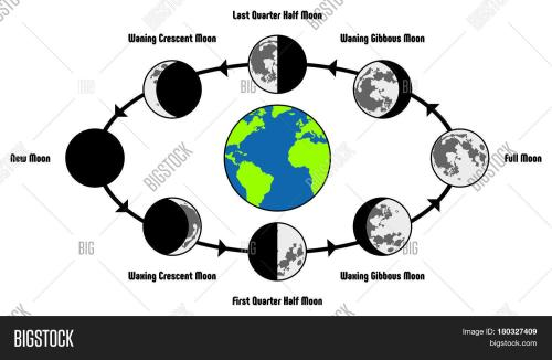 small resolution of moon life cycle diagram including earth position and all phases during circulation full new waning waxing