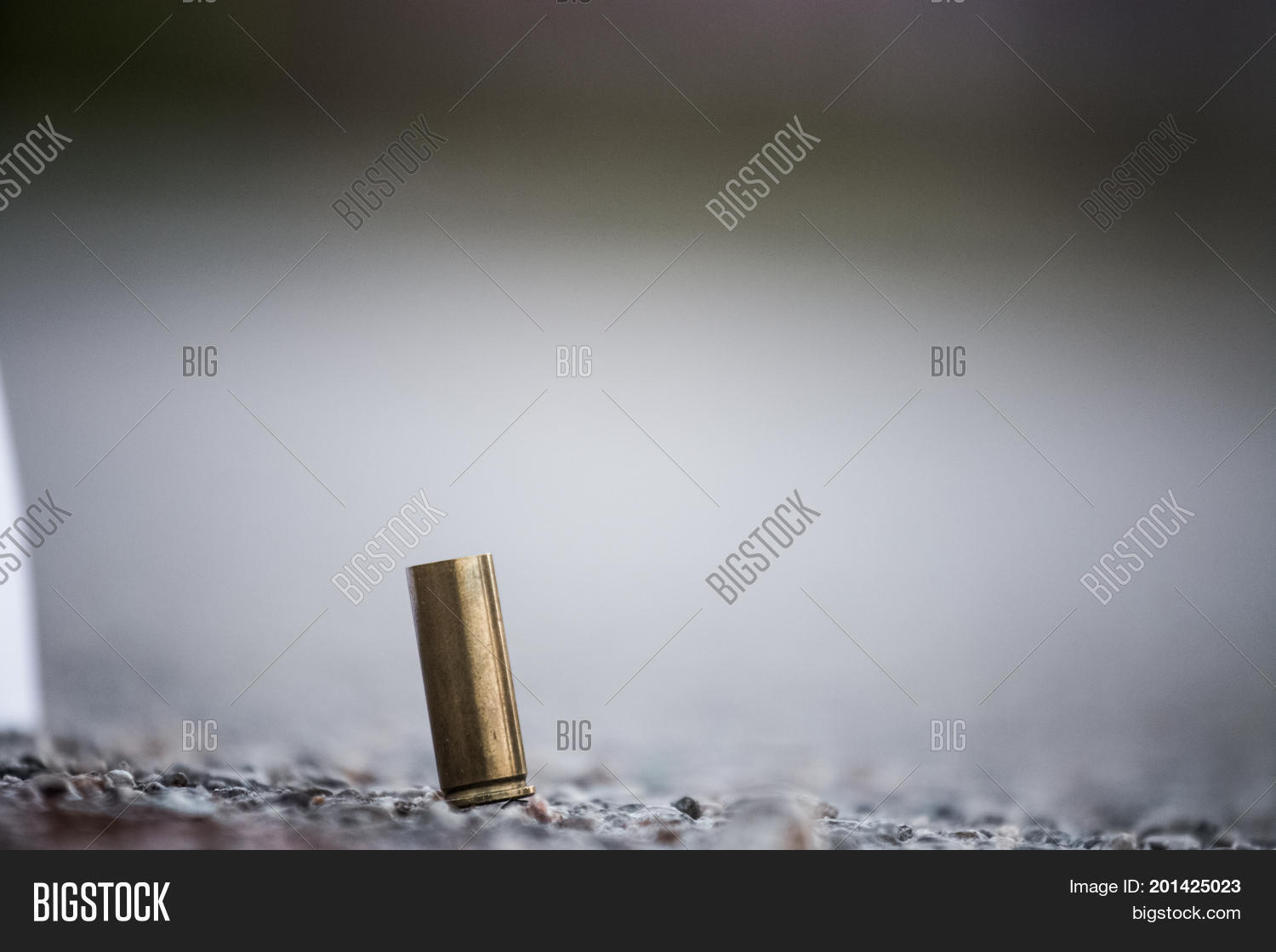 Bullet Shell On Ground Image & Photo (Free Trial)   Bigstock
