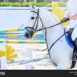 Horse Rider Light Image Photo Free Trial Bigstock