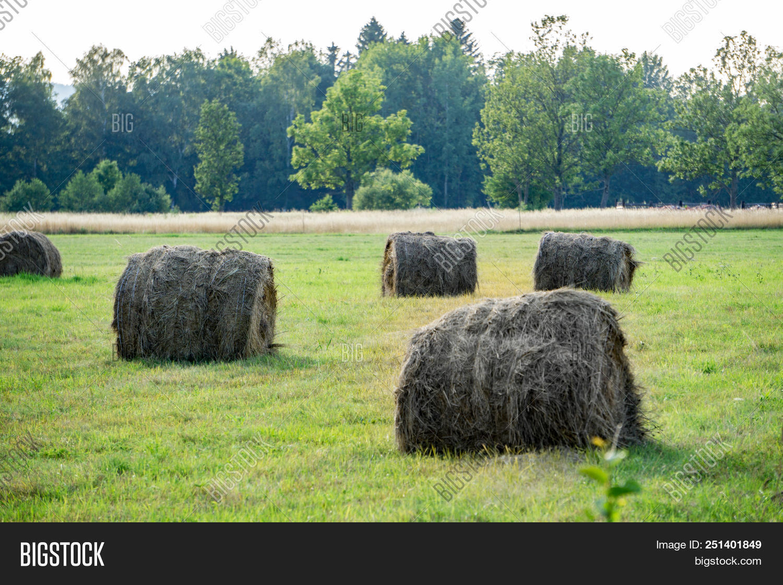 hay bail harvesting image
