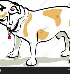bulldog clipart [ 1500 x 1216 Pixel ]