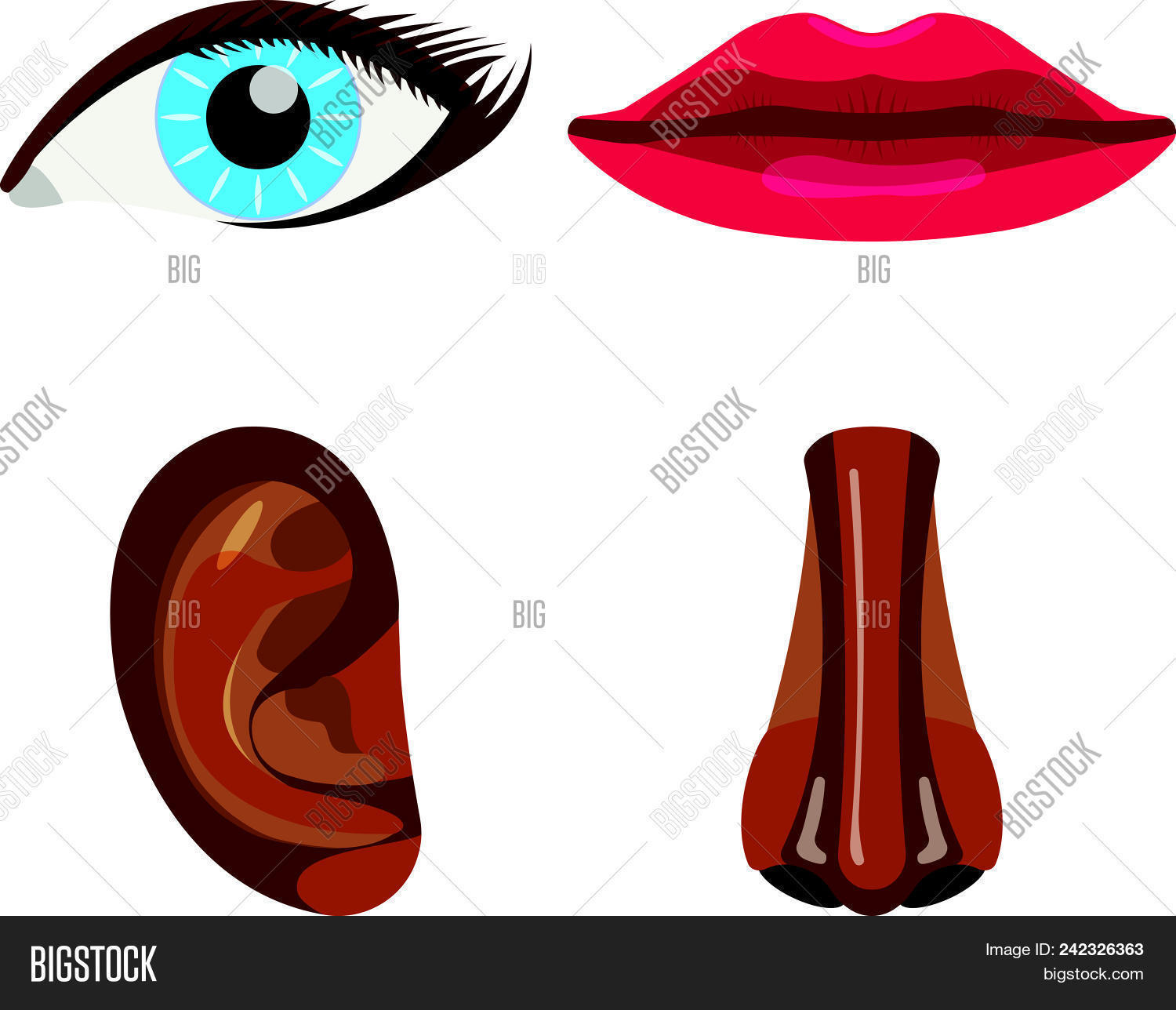 hight resolution of set of woman body part face body icon vector illustration label