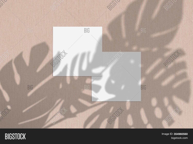 business card mockup image photo