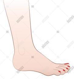 female foot nail polish [ 1290 x 1620 Pixel ]