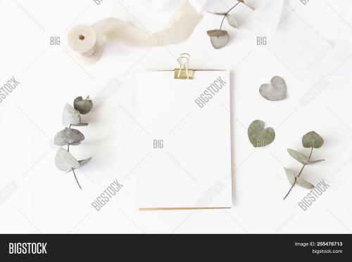 small resolution of feminine wedding desktop stationery mockup with blank greeting card dry eucalyptus leaves silk rib