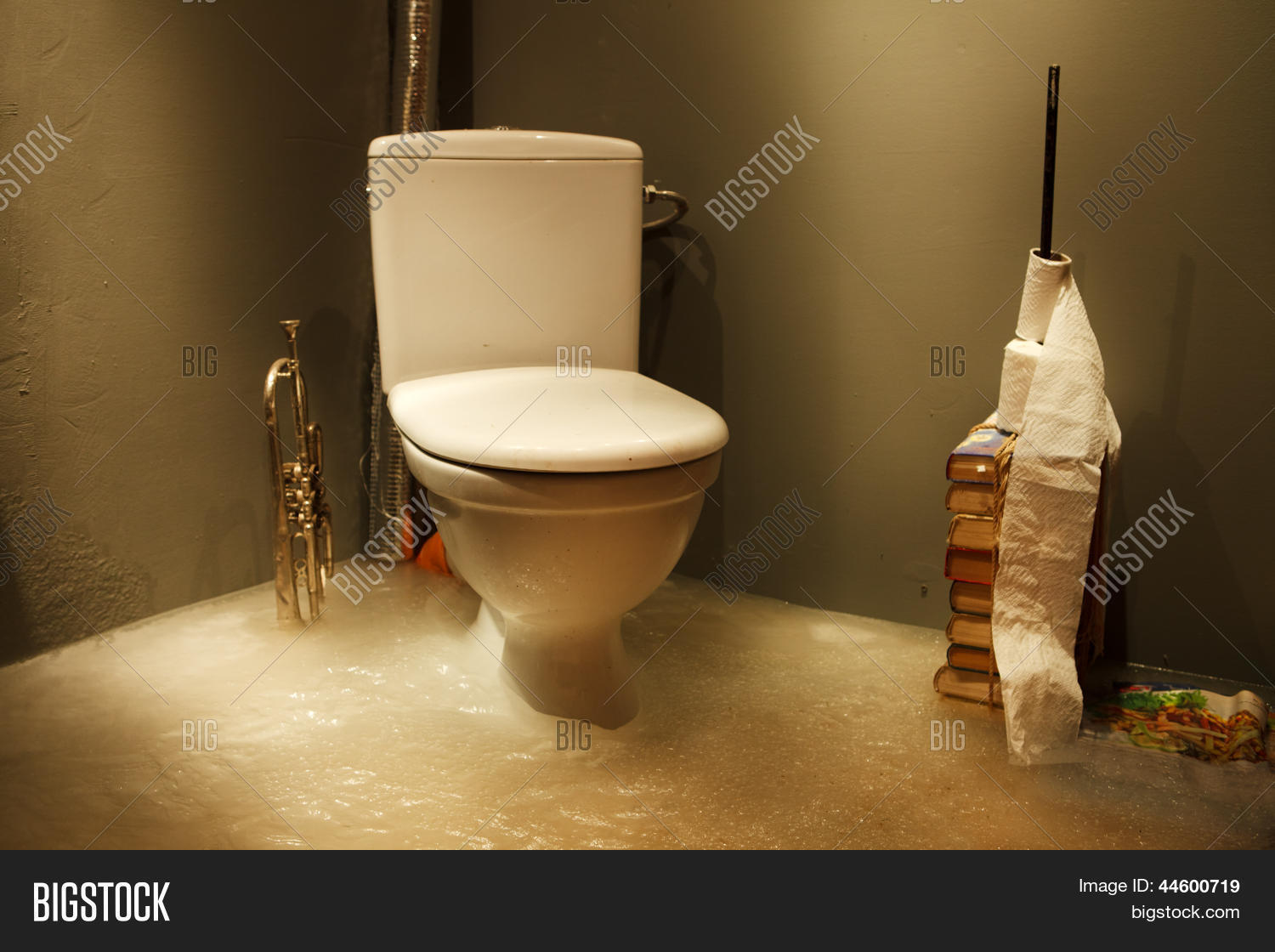 Frozen Bathroom Frozen Bathroom Image Photo Free Trial Bigstock