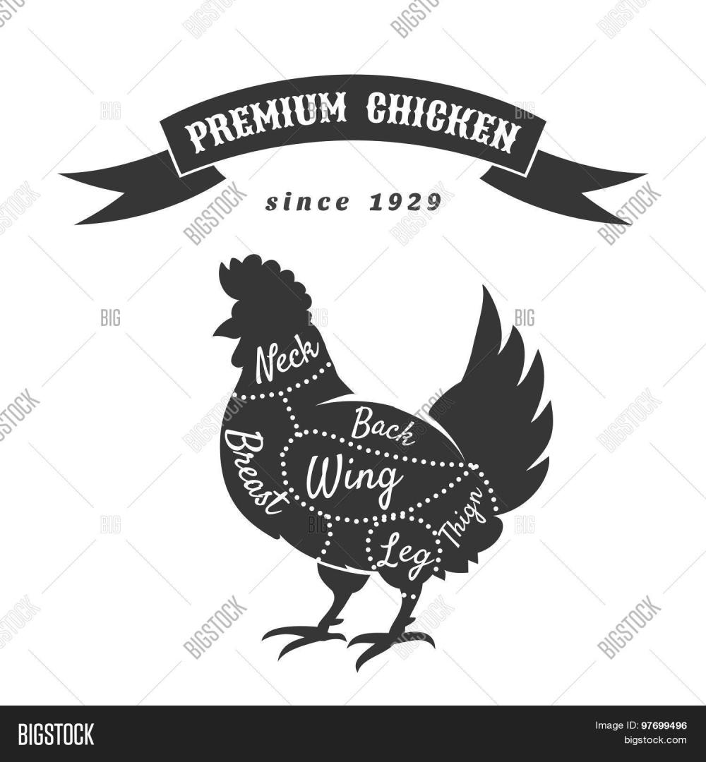 medium resolution of chicken meat cuts diagram farm food meat bird animal breast and leg wing and back vector illustration