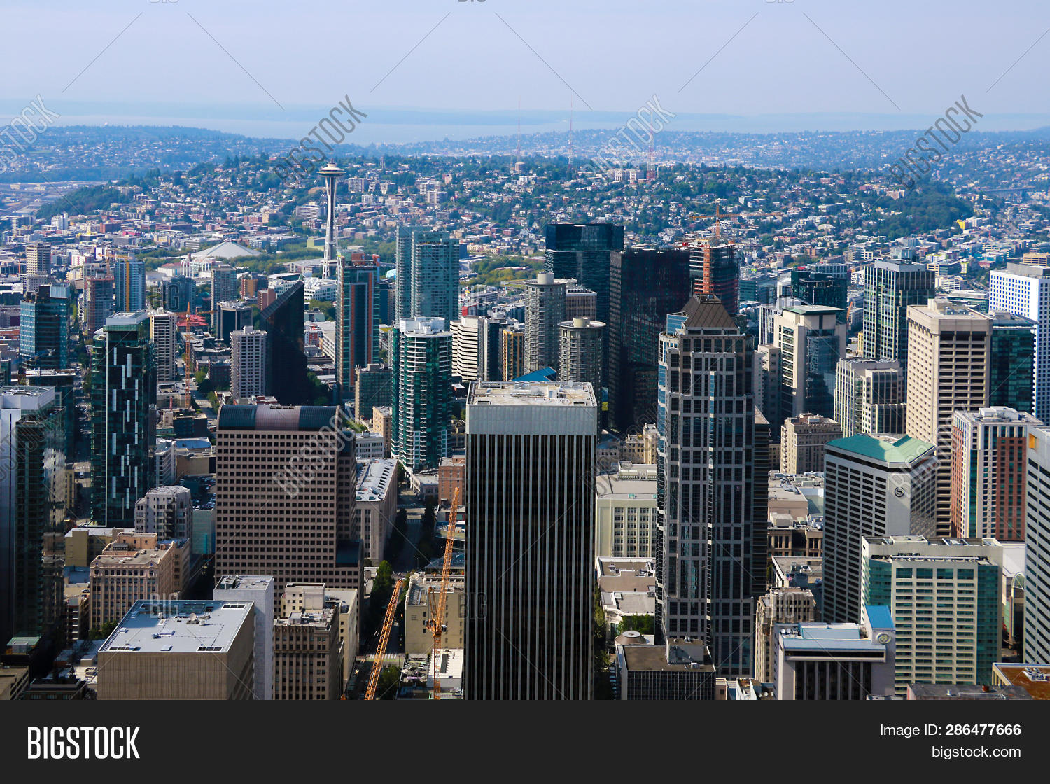Seattle Usa August Image & Photo (Free Trial) | Bigstock