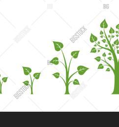 tree growth vector diagram [ 1500 x 995 Pixel ]