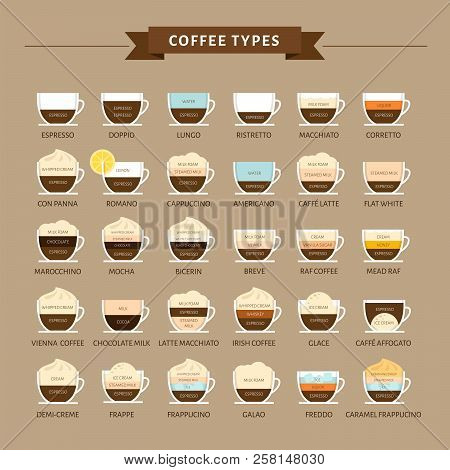 types coffee vector vector