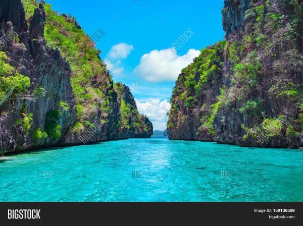 beautiful tropical &