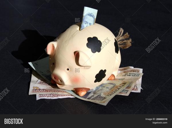 piggy bank diez # 49