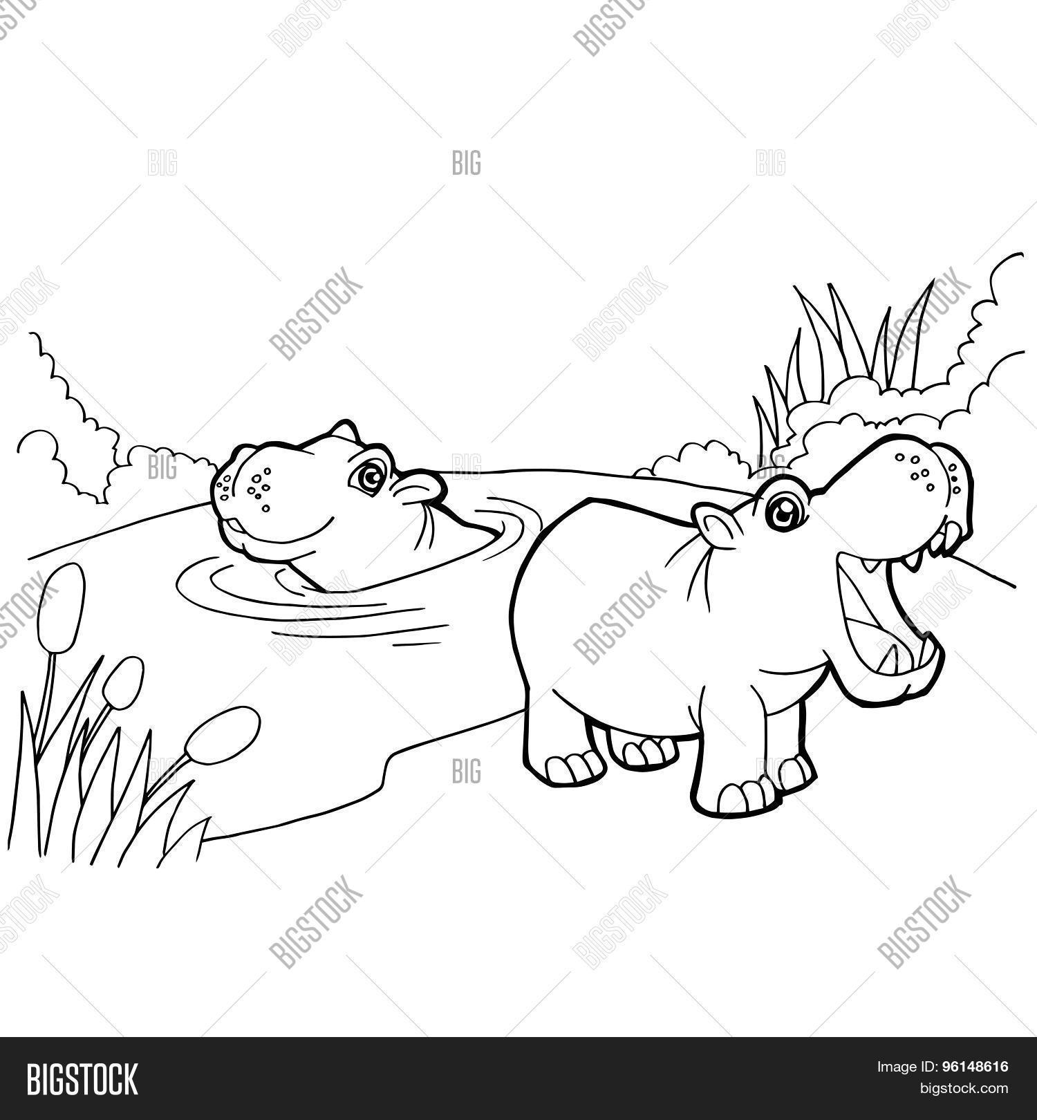 Hippopotamuses Coloring Pages