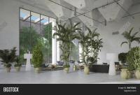 Modern Living Room Plants