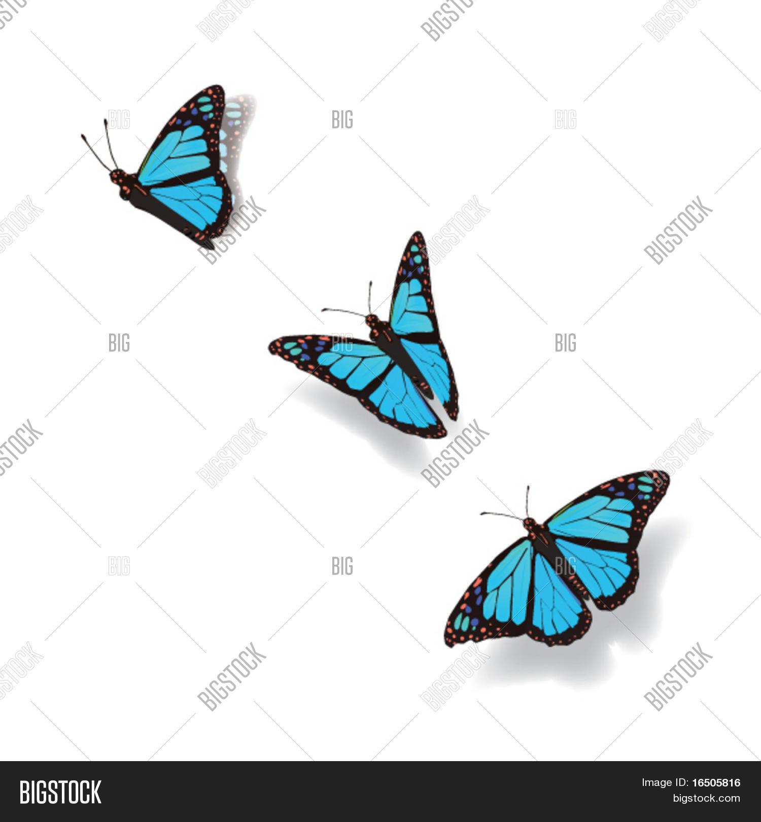Imagenes De Brillantes Animadas Mariposas