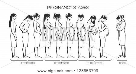 Pregnant Women Sketch Images, Stock Photos & Illustrations