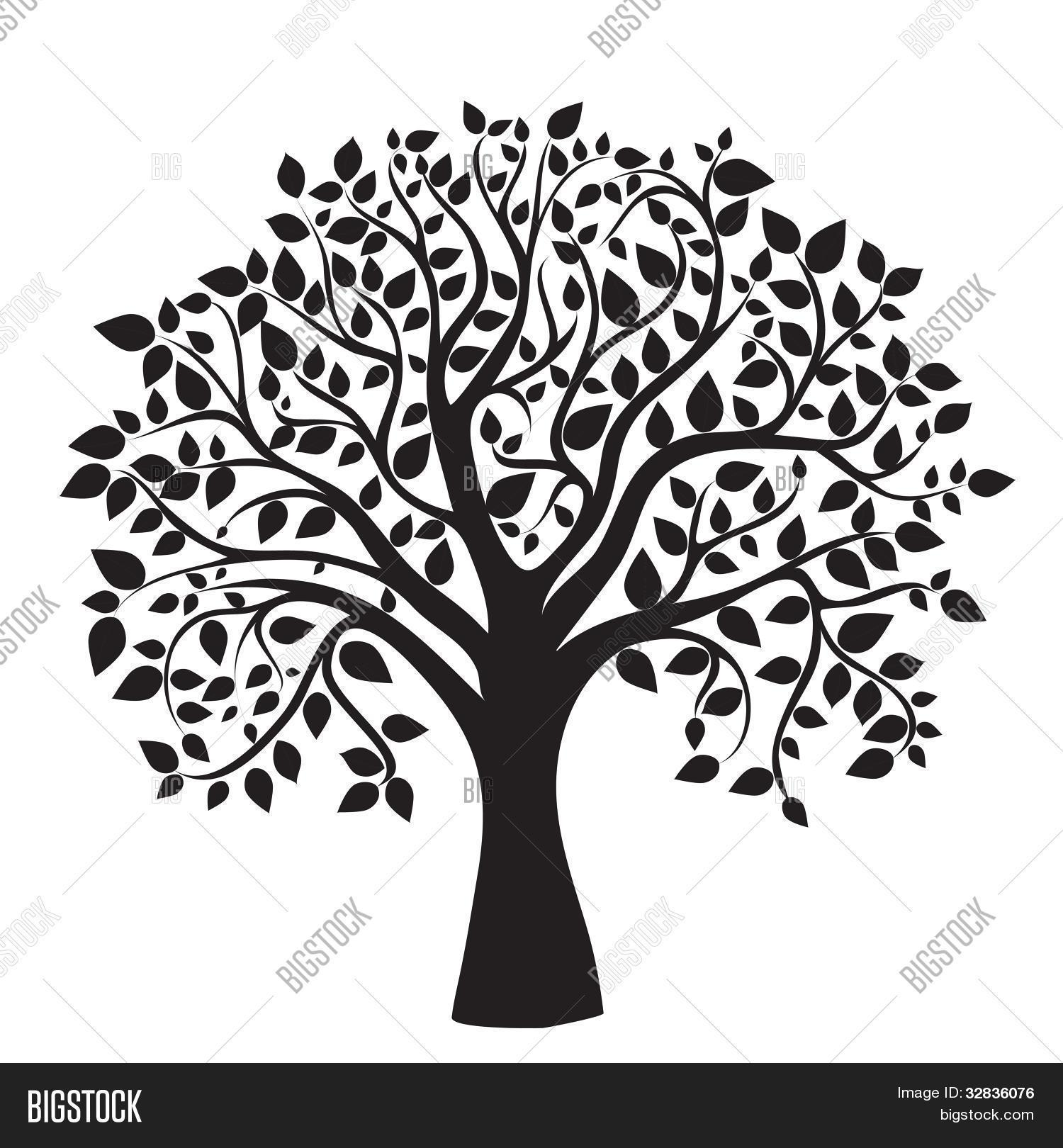Black Tree Silhouette Isolated On Image Amp Photo