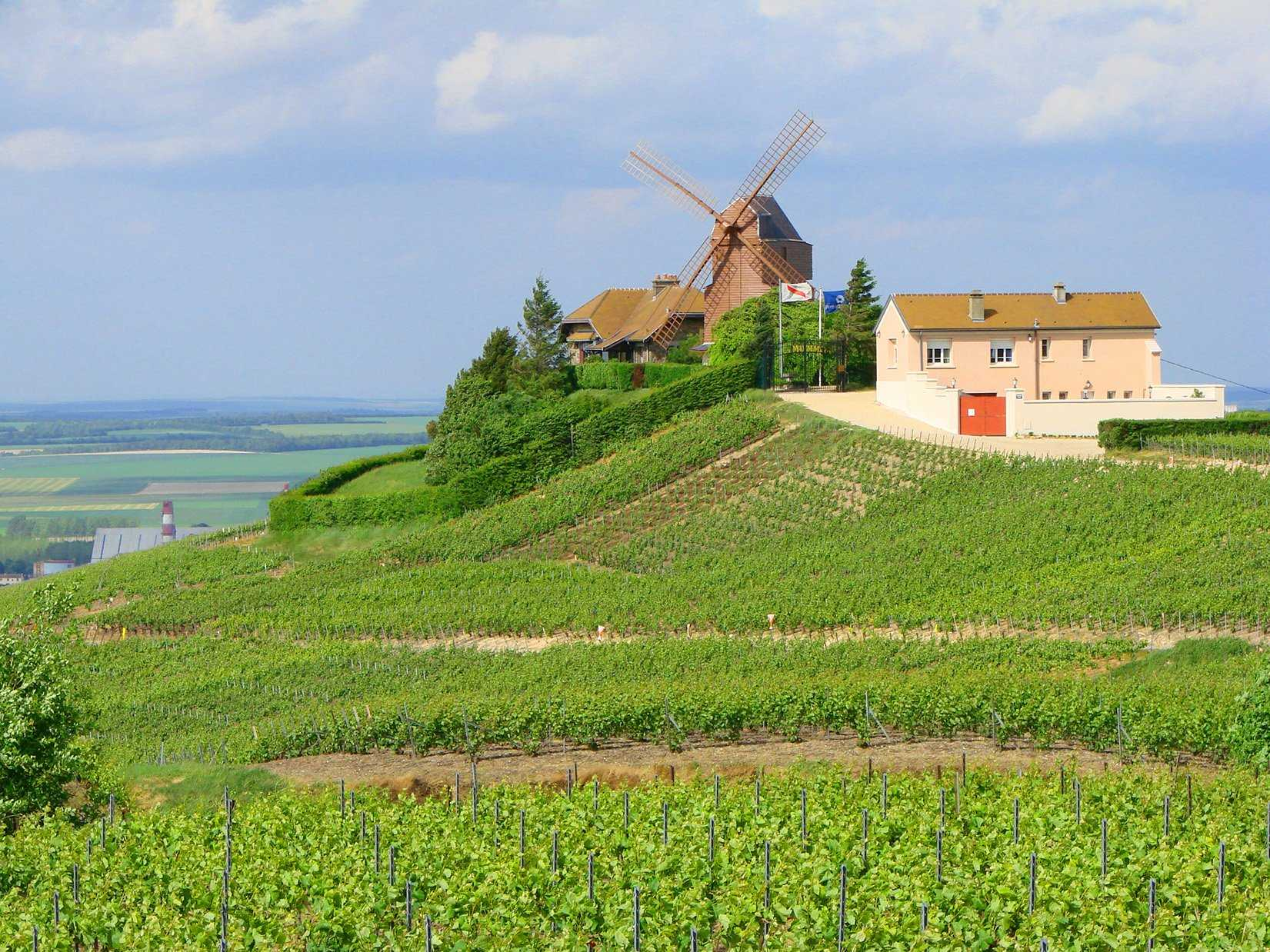 Sip champagne in the Champagne region of France.