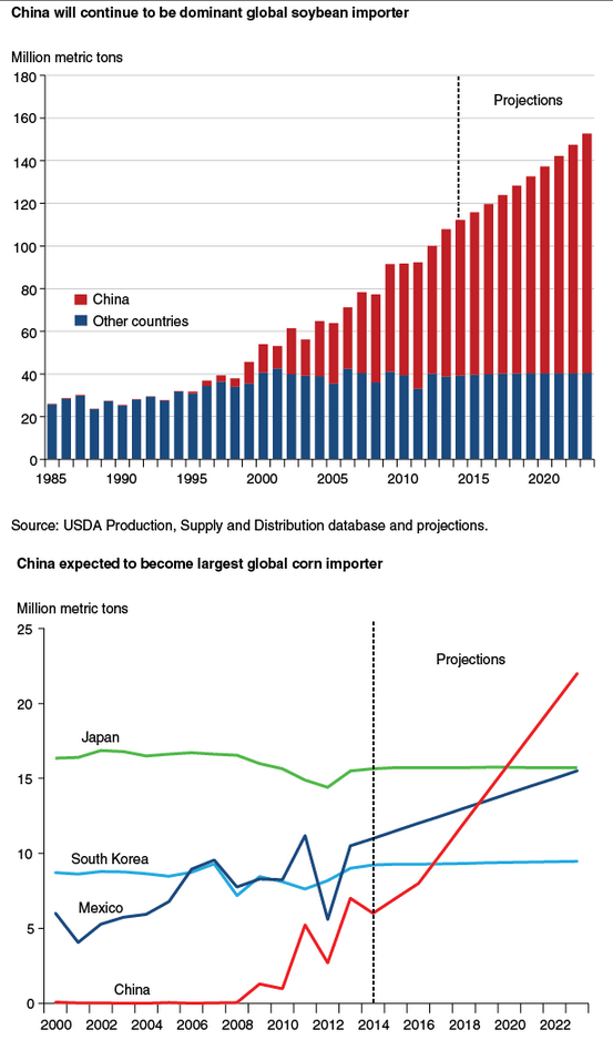 chinese bean corn imports