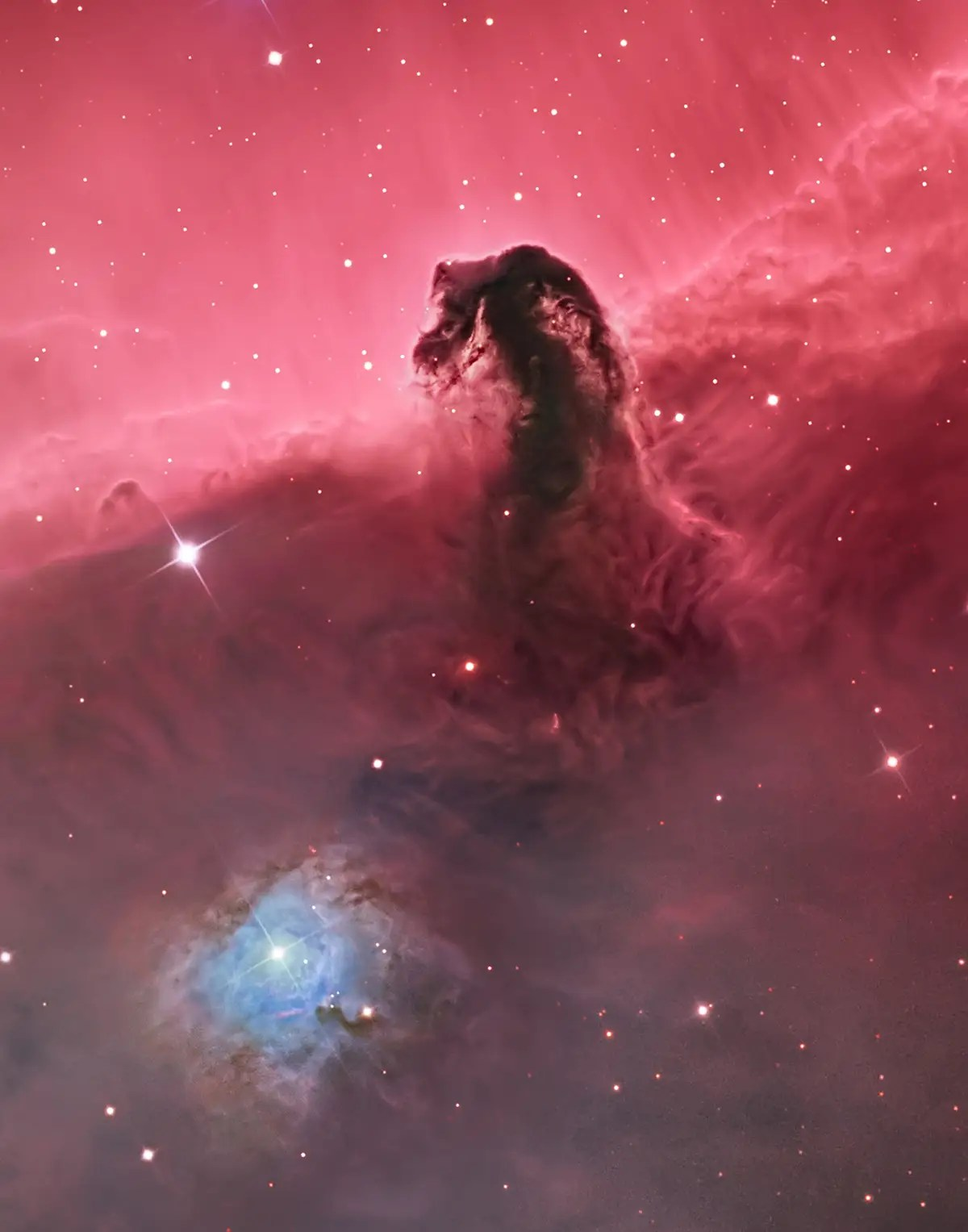 The winning photograph, taken by Bill Synder, is a stunning shot of the Horsehead Nebula. Snyder chose a wider angle for the shot, further depicting the awe-inducing scale of this massive form.
