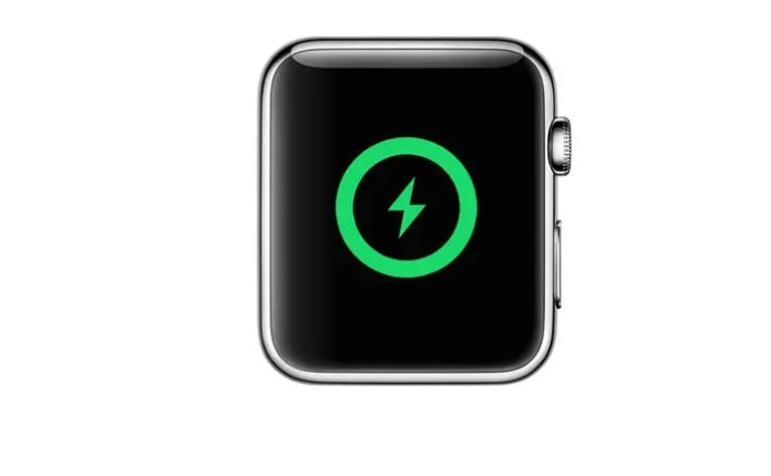 'Why is not my Apple Watch charging?': Learn how to troubleshoot Apple Watch charging points in Three methods