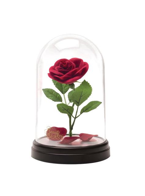 Rose De La Belle Et La Bete : belle, Enchantée, Belle, Bête, Vitrine, Lumineuse, Funidelia