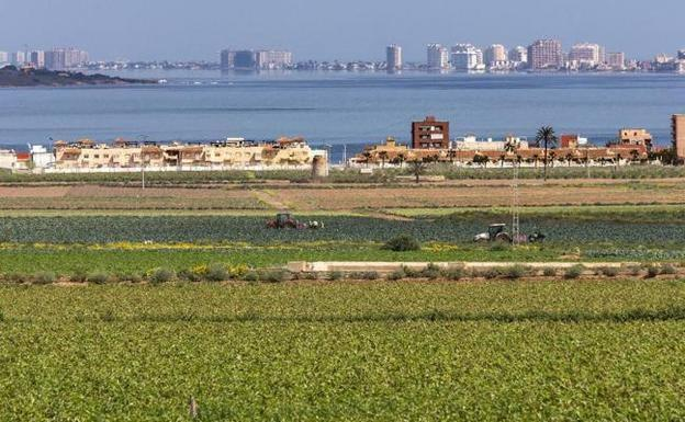 Crops next to the Mar Menor in a file image.