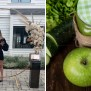The Sirtfood Diet Everything You Need To Know Moms