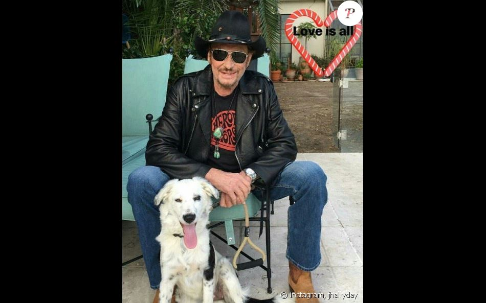 Johnny Hallyday publie une photo avec sa chienne Cheyenne sur Instagram le 21 novembre 2017, deux jours après la fin de son hospitalisation.